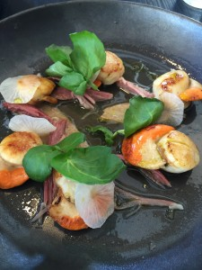 Scallops at Stillwater, Launceston